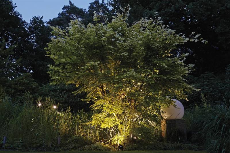 Iluminacion en el exterior del estanque 2