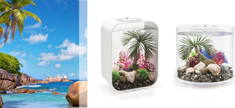 decoracion-Seychelles-para-acuarios-biOrb